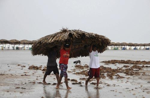 People remove the roof of a beach shelter before hurricane Alex is expected to make landfall, at Miramar beach in Tampico June 30, 2010. (Xinhua/Reuters Photo)