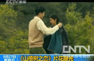 [视频]《山楂树之恋》片花曝光