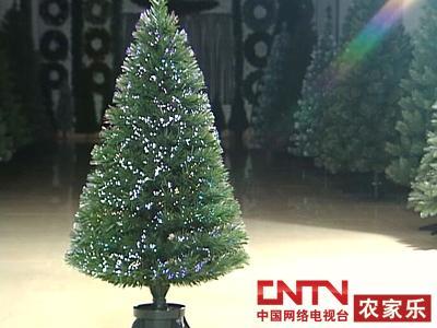 [农广天地]圣诞树的制作(2010.12.24)