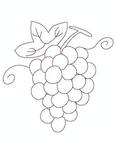 可爱简笔画图片大全葡萄