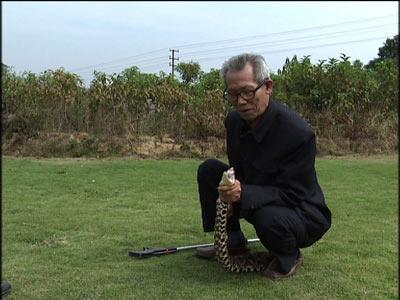 """""""毒蛇王""""的财富爆发"""