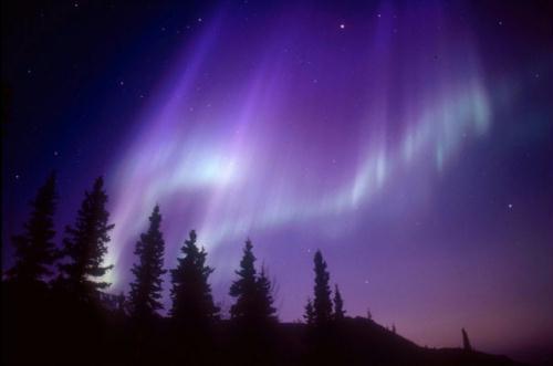 أروع مناظر الدنيا: أضواء الشفق القطبى 1326097150984_1326097150984_r