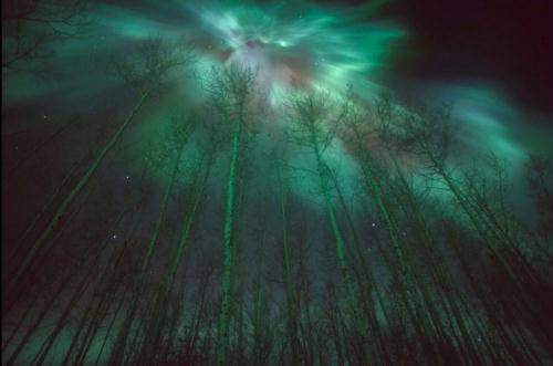 أروع مناظر الدنيا: أضواء الشفق القطبى 1326097178757_1326097178757_r