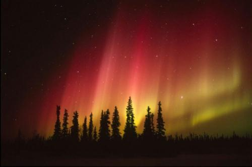 أروع مناظر الدنيا: أضواء الشفق القطبى 1326097200833_1326097200833_r