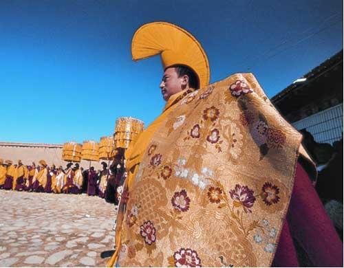 神树—凡是去过塔尔寺的游客都会听到导游津津乐道