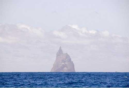 澳大利亚豪勋爵岛柏尔金字塔:科学家发现,这些竹节虫依附在这根世界最