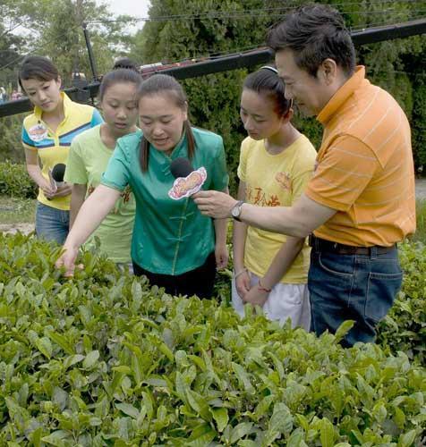 """《快乐戏园》""""暑期日照行""""茶园外景工作人员给主持人、小同学们介绍采茶的要领"""