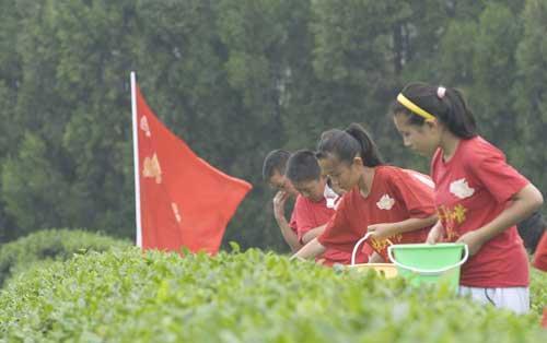 """《快乐戏园》""""暑期日照行""""茶园外景同学们进行采茶比赛"""