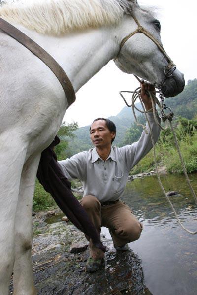 """徐校长说:""""这匹马通人性,成了我的好伙伴,每天下山我都会带它到河边给它洗澡""""。"""