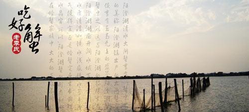 阳澄湖大闸蟹:走起