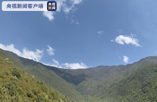 四川凉山:冕宁县石龙镇马鞍村森林火灾明火已扑灭
