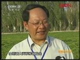 新疆:赚钱的花生