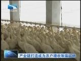 《湖北新闻》 20120104