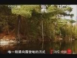 """《地理中国》 20120422 """"世界地球日""""特别节目《地球家园》——致命袭击"""