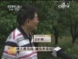 江西李翔华博士养泰和乌鸡 赚钱有奇招