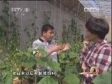 河北省刘志国打造循环农业产业链:大山里的