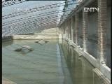黄河口鳖大棚养殖技术