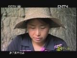 《茶叶之路》 20120720 第十二集 连四古纸