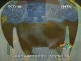 逍遥游世界11 发愤涂墙 动画大放映学龄前版 20120725