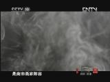 《探索·发现》 20120730 中华龙(十):龙情未了(上)