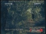 《地理中国》 20120804 暑期特别节目《地球家园》——海岛惊魂