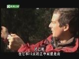 《荒野求生》 20120826