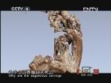 《探索·发现(亚洲版)》 20120915 手艺Ⅱ——岁月沉香