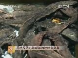 陈玖安娃娃鱼致富经:用吃亏的办法成就的娃娃鱼财富