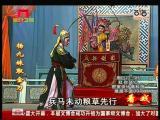 《杨九妹取金刀》第七场 九妹点兵 看戏 - 厦门卫视 00:06:31