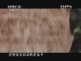 《中国武警》 20121104 彝良抗震的11个日夜