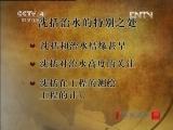 《百家讲坛(亚洲版)》 20121113 千年一笔谈(四)汴水留影
