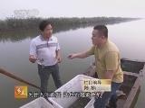 [乡土]宁河寻宝记(20121120)