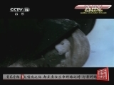 [音乐人生]楚人歌 腾格尔 20121125