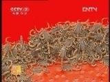 农广天地,蝎毒的采集技术_致富经