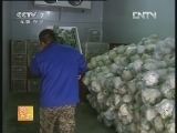 [农广天地]鲜切蔬菜冷链加工工艺、北方果蔬脆片加工技术(20121213)
