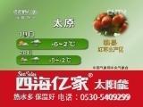 《农业气象》_20121219_06:00
