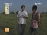 [农广天地]传统名肴烤全羊(20130103)