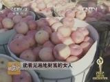 刘岩农产品贸易致富经,2012十大三农创业致富榜样展播(3)能看见遍地财富的女人