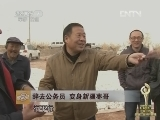 李志民红枣致富经视频:辞去公务员 变身新疆枣哥