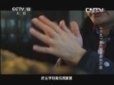 《探索·发现》 20130524 《手艺》第三季之《徽韵巧雕》