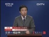 《百家讲坛》 20130530 汉武帝的三张面孔(十六)汗血宝马