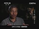 《探索·发现》 20130611 《手艺》第三季之《嘉义交趾》