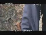 《地理中国》 20130620 秘境零距离·丛林探秘