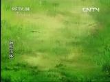 《动画梦工场》 20130803 19:00