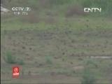 枸杞种植技术科技苑,三只鸟管6000亩枸