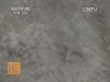 [农广天地]杏鲍菇工厂化栽培技术(20131209)