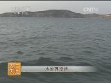 贝壳养殖农广天地,海大金贝养殖技术