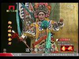 《杨九妹取金刀》第五场 看戏 - 厦门卫视 00:26:00