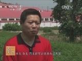 [农广天地]东辽黑猪养殖技术(20140401)