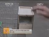 [农广天地]七彩文鸟养殖技术(20140420)